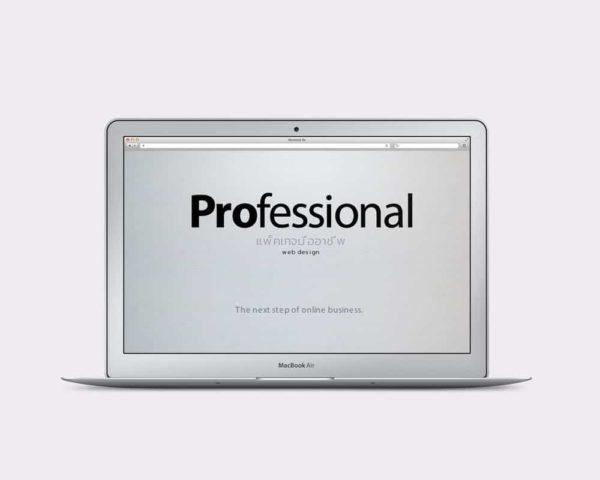 แพ็คเกจออกแบบเว็บไซต์มืออาชีพ